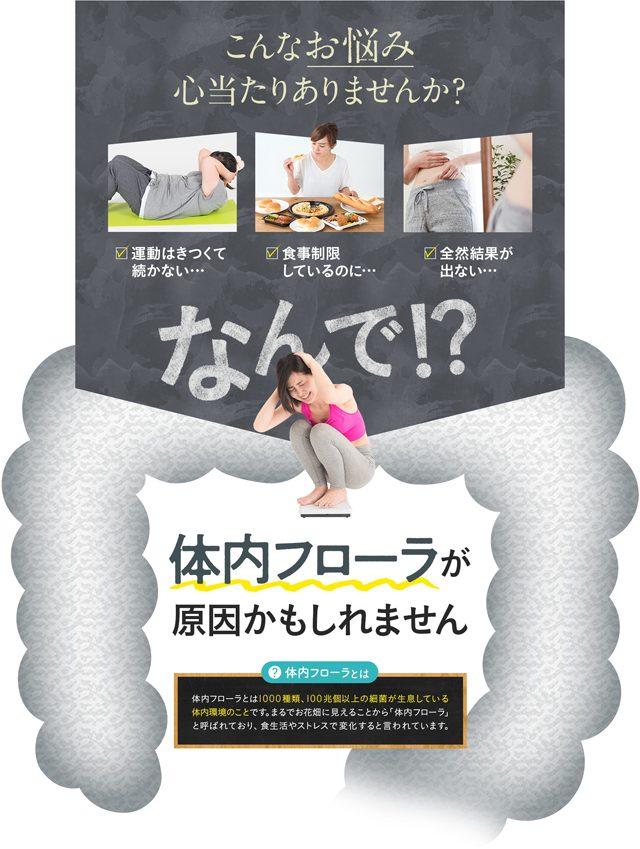花菜の選べる乳酸菌,効果なし,評判,口コミ